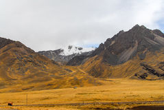 View along the Cusco-Puno Road, Peru Royalty Free Stock Images