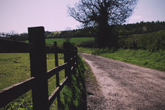 View along a path in the Chilterns, England Vintage Retro Filter Royalty Free Stock Images