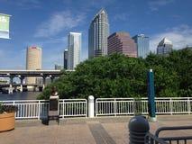 Downtown Tampa royalty free stock photos