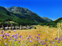 View on alpine mountain village Rhemes Notre Dame from hayfield Stock Images