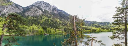 View of the Alpsee lake near the Neuschwanstein castle in Bavaria stock photography