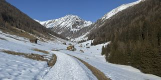 View of Altafossa Valley, Dolomites. Panoramic view in spring of the valley of Altafossa, Dolomites - Italy royalty free stock photo