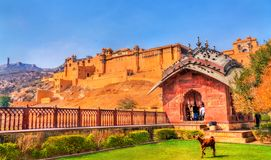 View of Amer Fort from its garden. A major tourist attraction in Jaipur - Rajasthan, India. View of Amer Fort from its garden. A major tourist attraction in Royalty Free Stock Images