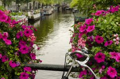 View of Amsterdam canal and flowers Stock Photo