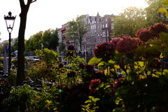 A view of Amsterdam. A view of the houses and flowers next the canals of Amsterdam Royalty Free Stock Photo