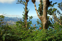 View from the Anaga Mountains. Tenerife Royalty Free Stock Photography