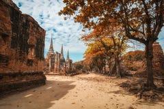 Ancient city of Ayutthaya, Thailand in autumn look. (Wat Phra Sr. View of ancient city of Ayutthaya, Thailand in autumn look. (Wat Phra Sri Sanpetch royalty free stock photos