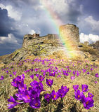 View of the ancient observatory. On the Montenegrin Ridge, Black Mountain - Pop Ivan is old Polish observatory, against which the first spring bloom beautiful Stock Photography