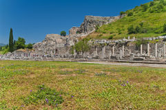 View of ancient ruins with flower field in foreground Stock Image