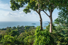 View of the Andaman Sea, Phuket Stock Photography