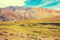 View of Andes mountains, Valle Hermoso Royalty Free Stock Image