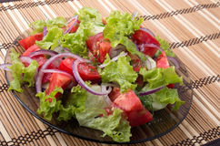 View angle on a fragment of vegetarian salad from fresh vegetabl Stock Photography