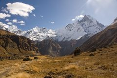The view from Annapurna Base Camp is impressive Stock Photography