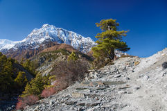 View on Annapurna mountain Nepal Royalty Free Stock Images