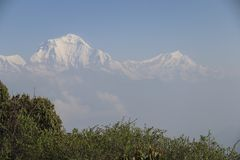 View of the Annapurna range from Poon Hill at sunrise, Ghorepani/Ghandruk, Nepal stock photography
