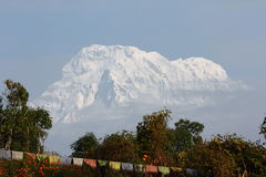View of the Annapurna South Stock Photography