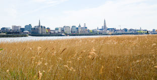 View on Antwerp by the River Scheldt in Flanders, Belgium. View on the center of Antwerp by the River Scheldt in Flanders, Belgium Stock Photography