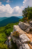 View of the Appalachians from the summit of Tibbet Knob, West Virginia. Stock Photo