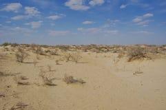 View of Aral lake. In Uzbekistan Royalty Free Stock Image