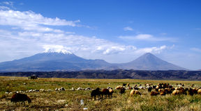 View on Ararat from Turkey. View from Ararat mountain on Turkey side Royalty Free Stock Photos
