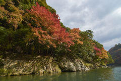 View of Arashiyama Kyoto during Autumn Stock Photos