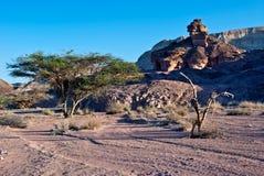 View on Arava desert, Israel Stock Photography