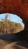 View from the arch to the park. View from the bridge to the park. Path in the pine park. Russia Stock Photography