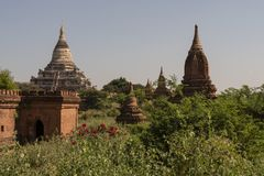 Temples and pagodas of Bagan. View of the archaeological park of the ancient temples and pagodas of Bagan. Myanmar royalty free stock photography