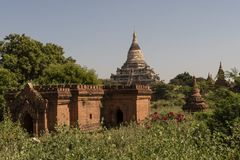 Temples and pagodas of Bagan. View of the archaeological park of the ancient temples and pagodas of Bagan. Myanmar royalty free stock images