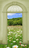 View through arched door, old castle Stock Images