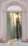 View through arched door, wintry forest Stock Photo