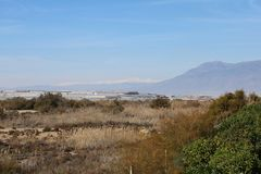 View of arid field and greenhouse royalty free stock photography