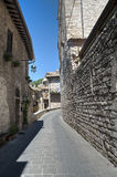 View of Assisi. Umbria. Stock Images
