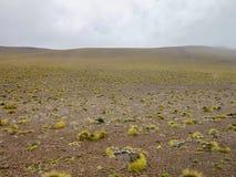 Desert of Atacama, Chile Royalty Free Stock Photography