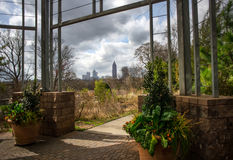 View of Atlanta midtown from botanical garden Royalty Free Stock Images
