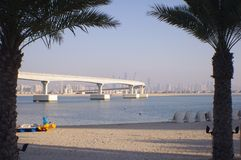 Beach, Water, Palm Trees,Bridge and City royalty free stock photos