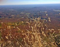 View from atop Pilot Mountain on a glorious autumn day in North Carolina Royalty Free Stock Photo