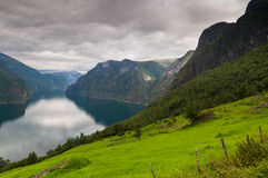 View at Aurlandfjord - pictures of Norway Royalty Free Stock Image