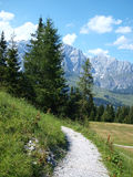 View of the Austrian Alps Royalty Free Stock Photo