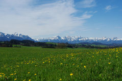 View on Austrian and German Alps from hill near St. Eingaden, Bavaria, Germany Royalty Free Stock Photos