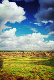 View on the autumn field and cloudy sky instagram stile Royalty Free Stock Photos