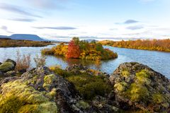 View of the autumn forest and the surface of the lake. Beautiful autumn landscape with water and bright vegetation. Iceland. Europ. E e royalty free stock images