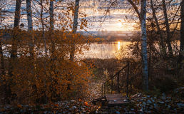 View on autumn landscape with birches. View on autumn landscape with birch trees sunrise over the river Royalty Free Stock Photography
