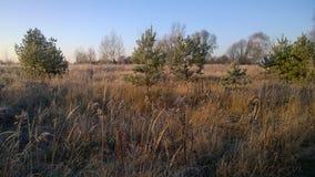 Autumn landscape, southern Bohemia royalty free stock image