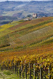 View of autumn the Langhe Unesco heritage Stock Images