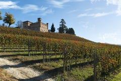View of autumn the Langhe Unesco heritage Stock Photos
