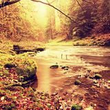 View into autumn mountain river with blurred waves,, fresh green mossy stones and boulders on river bank covered with colorful lea Stock Image