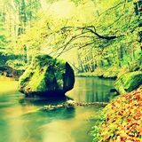 View into autumn mountain river with blurred waves,, fresh green mossy stones and boulders on river bank covered with colorful lea Royalty Free Stock Photo