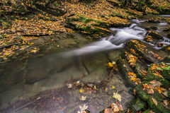 View of autumn waterfalls Stock Images