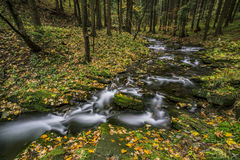 View of autumn waterfalls Stock Photography